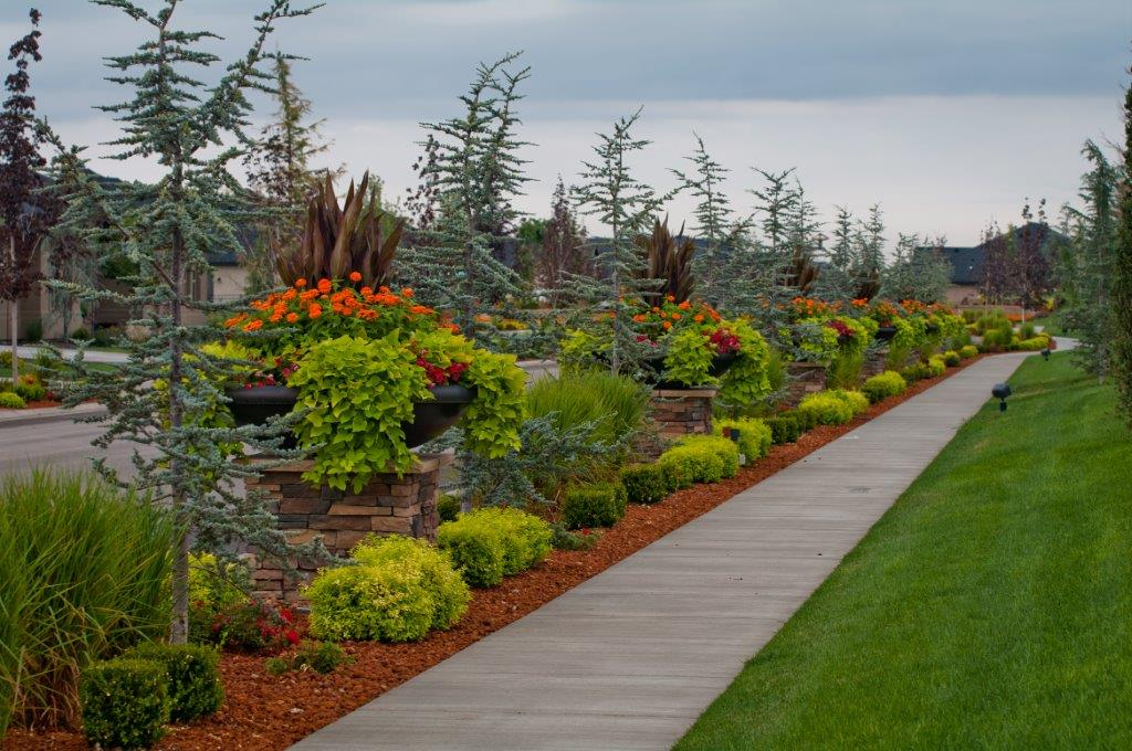 Landscaper Landscape Design Hardscaping Boise Id